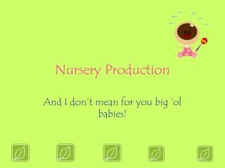 Nursery Production