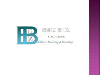 What is bigbiz solutions