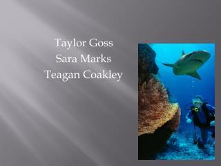 Taylor Goss Sara Marks Teagan Coakley