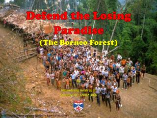 Defend the Losing Paradise (The Borneo Forest)