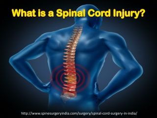 Spinal Cord Injury SCI