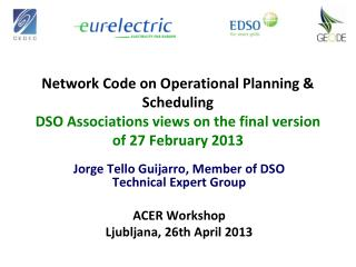 Jorge Tello Guijarro, Member of DSO Technical Expert Group  ACER Workshop