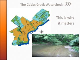 The  Cobbs  Creek Watershed: