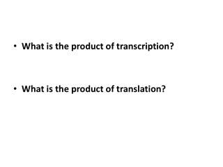 What is the product of transcription? What is the product of translation?