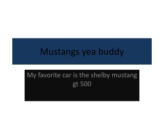 Mustangs yea buddy