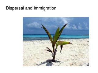 Dispersal and Immigration