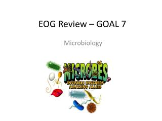 EOG Review – GOAL 7