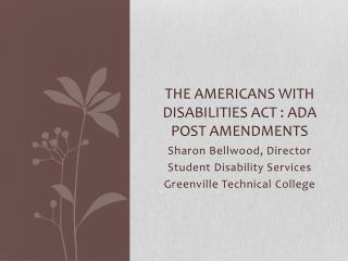The Americans with Disabilities Act : ADA Post Amendments