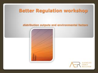 Better Regulation workshop distribution outputs and environmental factors