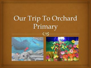 Our Trip To Orchard Primary