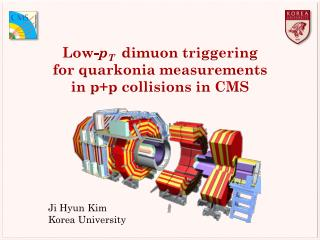 Low- p T dimuon  triggering  for  quarkonia  measurements in p+p collisions in CMS