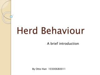 Herd Behaviour