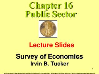 Chapter 16 Public Sector