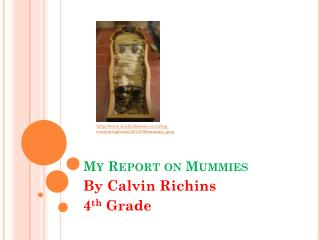 My Report on Mummies