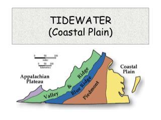 TIDEWATER  Coastal Plain