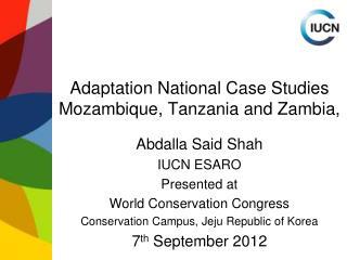 Adaptation National Case Studies Mozambique, Tanzania and Zambia,