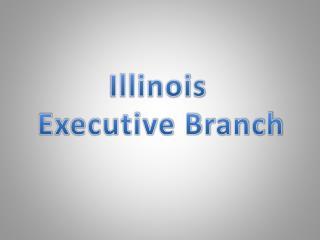 Illinois     Executive Branch