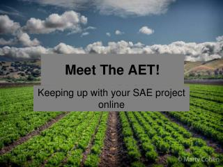 Meet The AET!