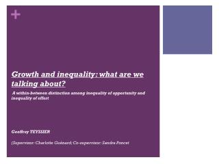 Growth and  inequality :  what  are  we talking about?