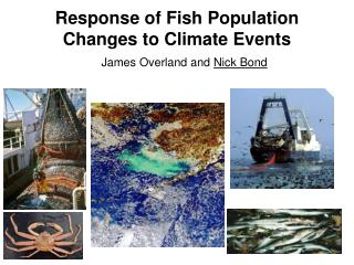 Response of Fish Population Changes to Climate Events