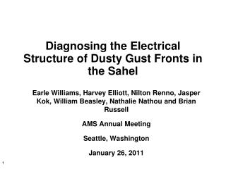 Diagnosing the Electrical Structure of Dusty Gust Fronts in the Sahel