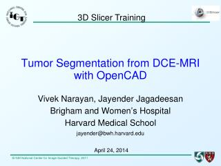 Tumor Segmentation from DCE-MRI with  OpenCAD