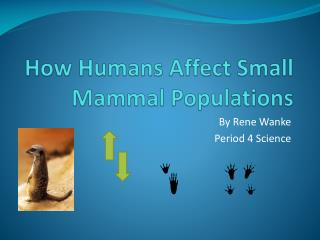How Humans Affect Small Mammal Populations