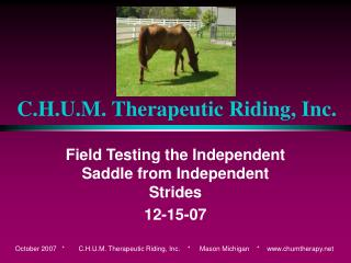 C.H.U.M. Therapeutic Riding, Inc.