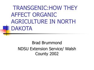 TRANSGENIC:HOW THEY AFFECT ORGANIC AGRICULTURE IN NORTH DAKOTA