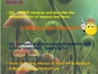 March 20 DO    SWBAT observe and describe the characteristics of  mosses and ferns .
