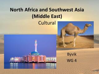 North Africa and Southwest Asia (Middle East) Cultural