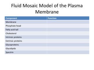 Fluid Mosaic Model of  the  P lasma  Membrane