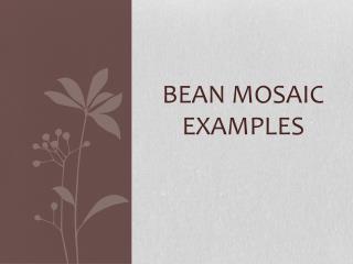 Bean Mosaic Examples