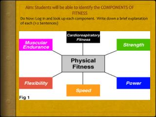 Aim: Students will be able to identify the COMPONENTS OF FITNESS