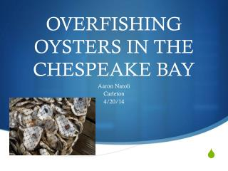 OVERFISHING OYSTERS IN THE CHESPEAKE BAY