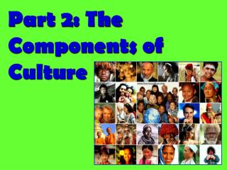 Part 2: The Components of Culture