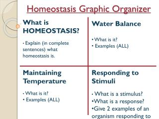 Homeostasis Graphic Organizer