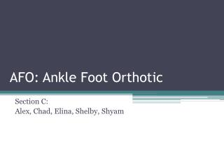 AFO: Ankle Foot Orthotic