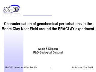 Characterisation of geochemical perturbations in the Boom Clay Near Field around the PRACLAY experiment