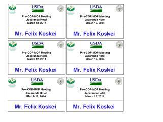 Mr. Felix  Koskei
