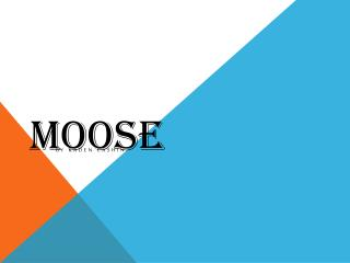 M oose