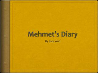 Mehmet's Diary