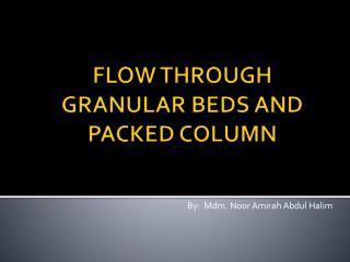 FLOW THROUGH GRANULAR BEDS AND PACKED COLUMN
