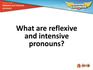 What are reflexive and intensive pronouns?