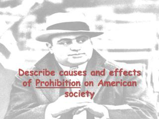 Describe causes and effects of  Prohibition  on American society