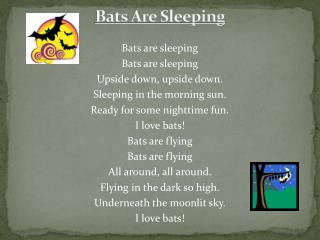 Bats Are Sleeping