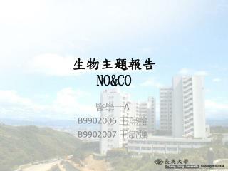 生物主題報告 NO&CO