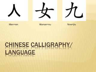 Chinese Calligraphy / Language