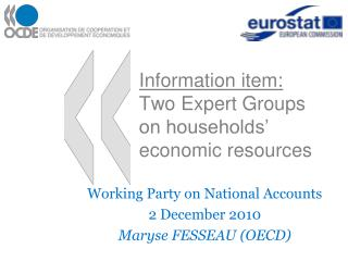 Information item:  Two Expert Groups on households  economic resources