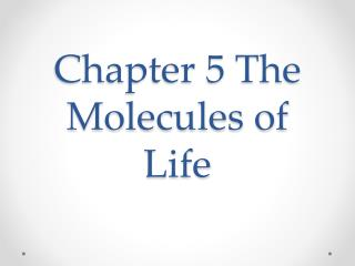 Chapter 5 The Molecules of Life